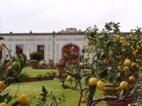 Immagine del giardino di Villa La Màgia (218.9 KB)